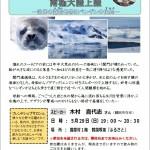 フレサロ(南極大陸上陸)チラシ